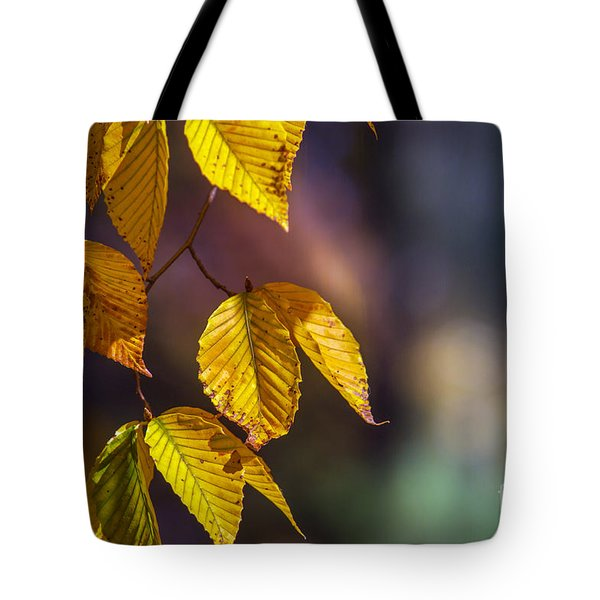 Autumn Sonata Tote Bag by Rima Biswas