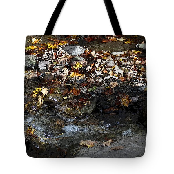 Autumn Soup Tote Bag by Diane E Berry