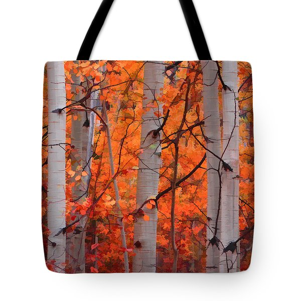 Tote Bag featuring the photograph Autumn Splendor by Don Schwartz