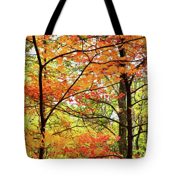 Autumn Splendor Fall Colors Leaves And Trees Ap Tote Bag