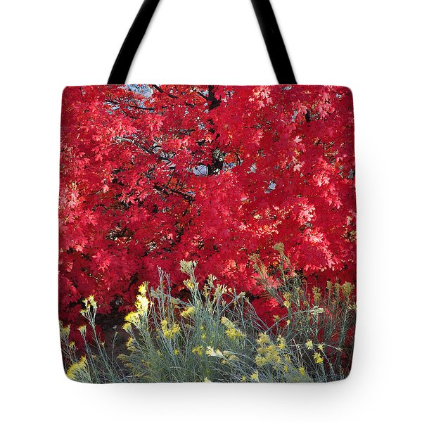 Autumn Splendor In Zion National Park Tote Bag