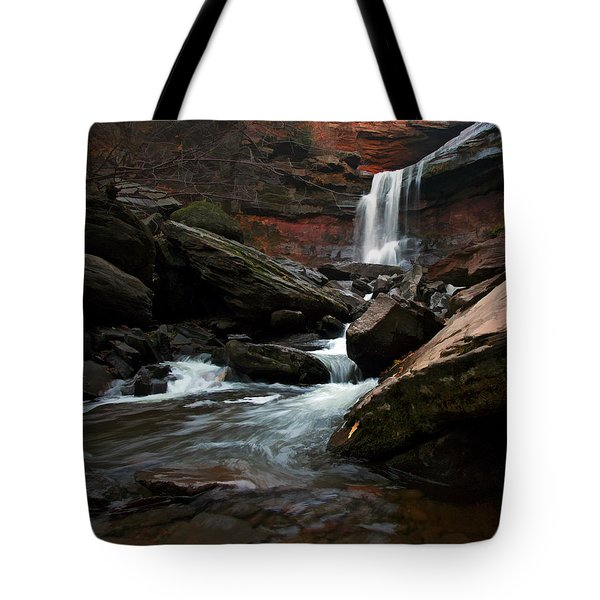 Autumn Spring Tote Bag