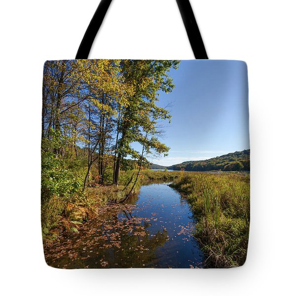 Tote Bag featuring the photograph Autumn Stream At Justus Lake by Lon Dittrick