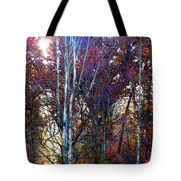 Autumn Sunlight Tote Bag by Jane Schnetlage