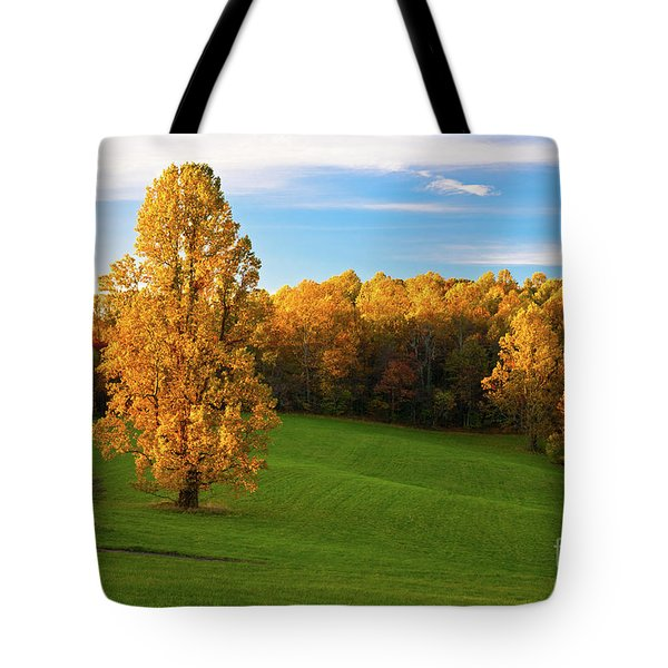 Tote Bag featuring the photograph Autumn Sunrise On A Blue Ridge Meadow by Dan Carmichael