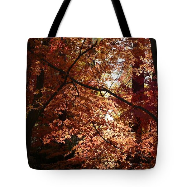 Autumn Sunshine Poster Tote Bag by Carol Groenen