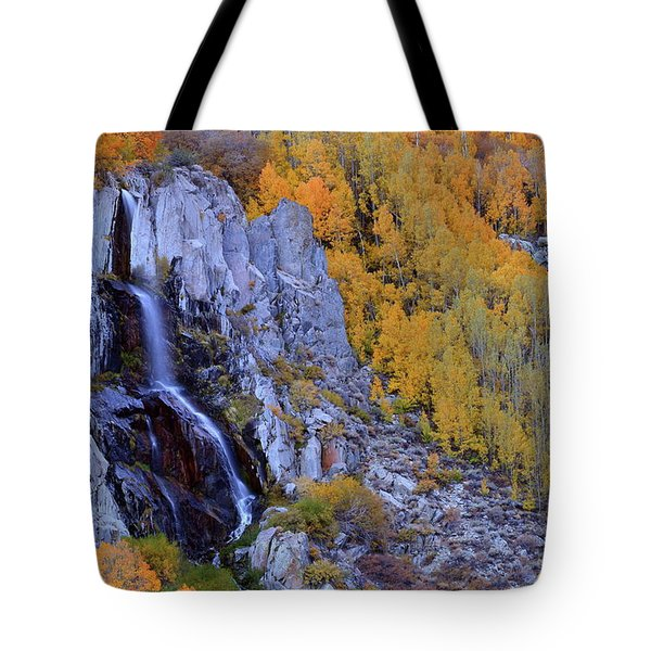 Autumn Surrounds Mist Falls In The Eastern Sierras Tote Bag