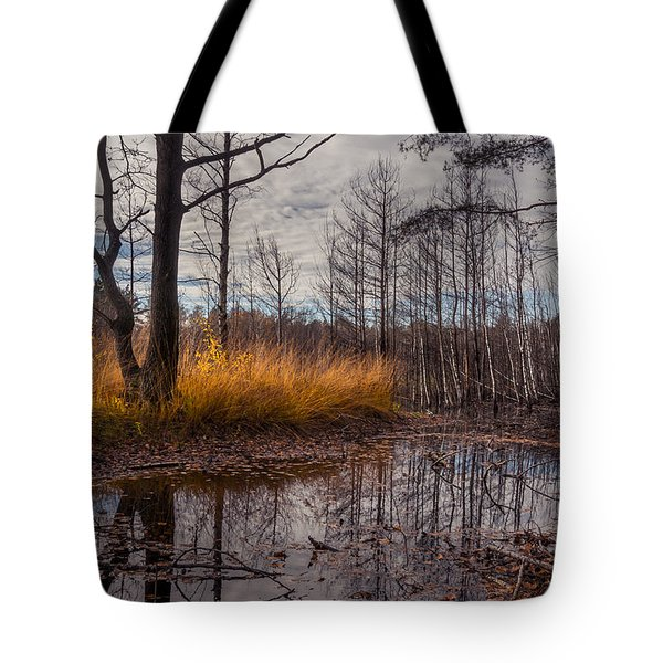 Tote Bag featuring the photograph Autumn Swamp by Dmytro Korol