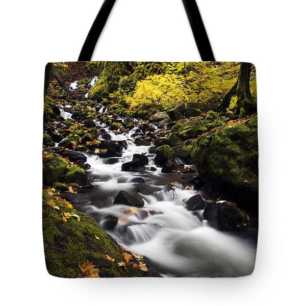 Autumn Swirl Tote Bag by Mike  Dawson