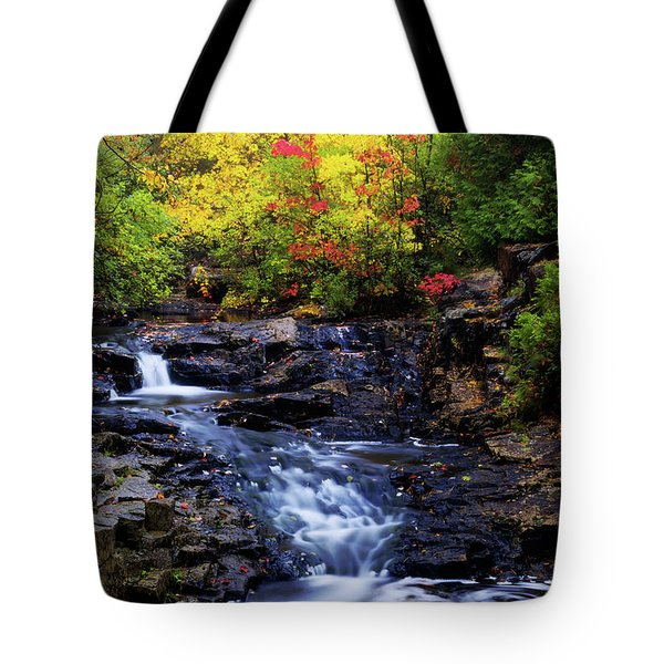 Autumn Swirls Tote Bag