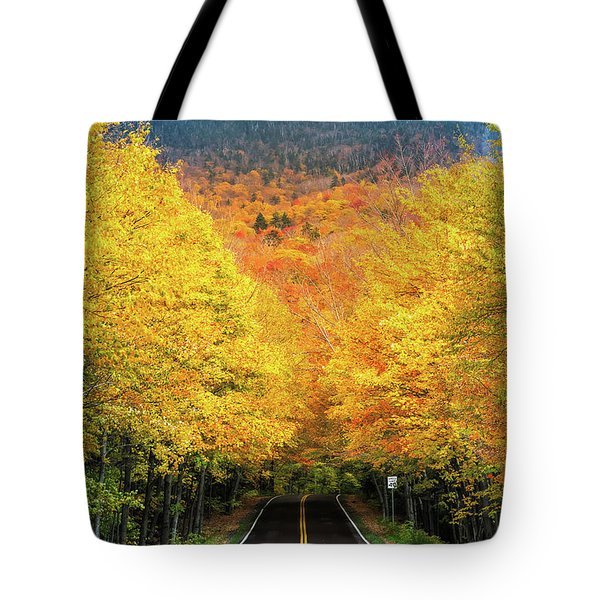 Autumn Tree Tunnel Tote Bag