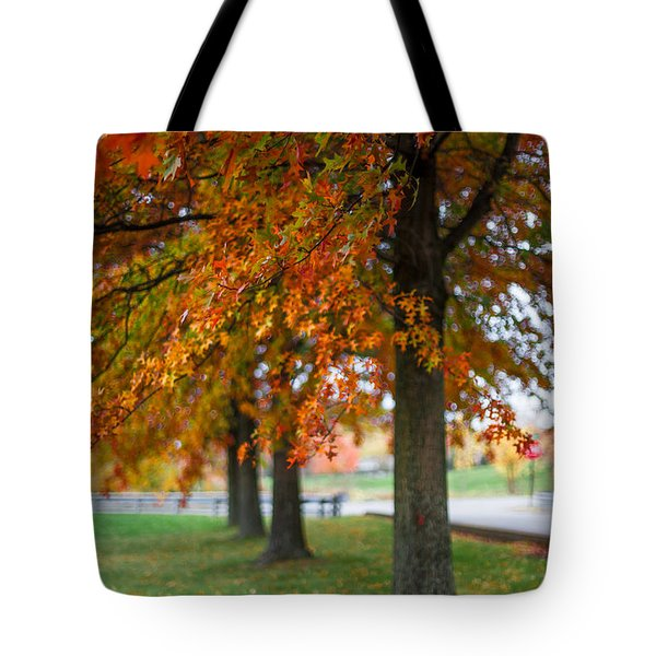 Tote Bag featuring the photograph Autumn Trees In A Row by April Reppucci