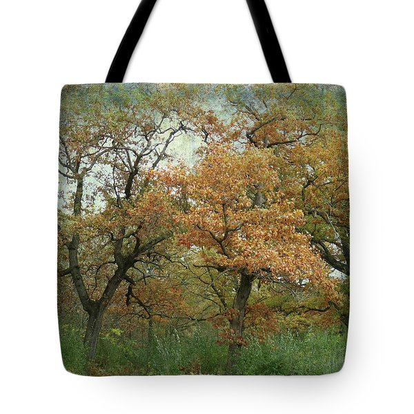 Autumn Trio Tote Bag by Scott Kingery