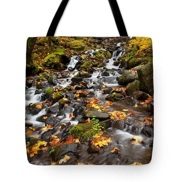 Autumn Tumbles Down Tote Bag by Mike  Dawson