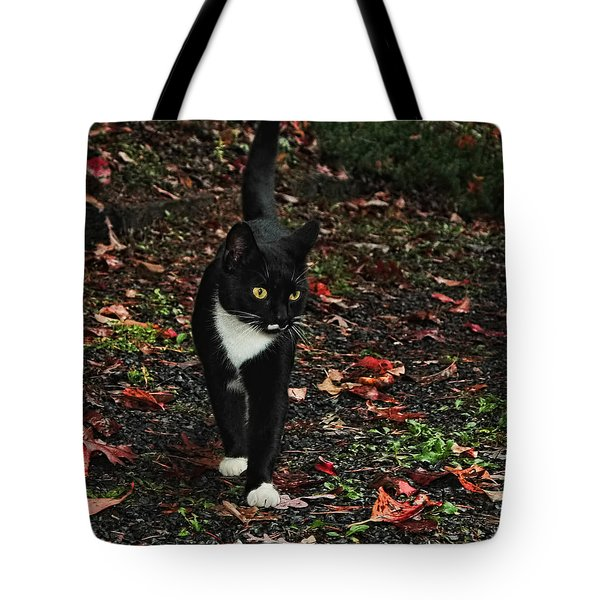 Autumn Tuxedo Kitty Tote Bag by Lara Ellis