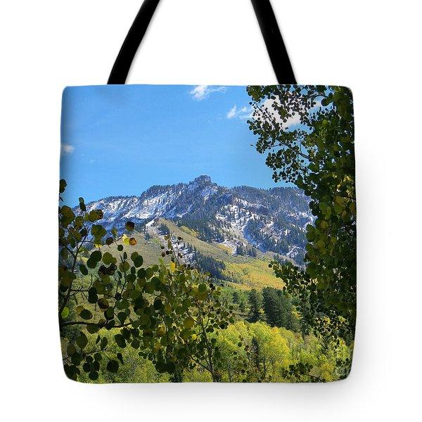Autumn View Through Aspen Leaves Tote Bag