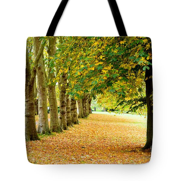 Autumn Walk Tote Bag by Colin Rayner