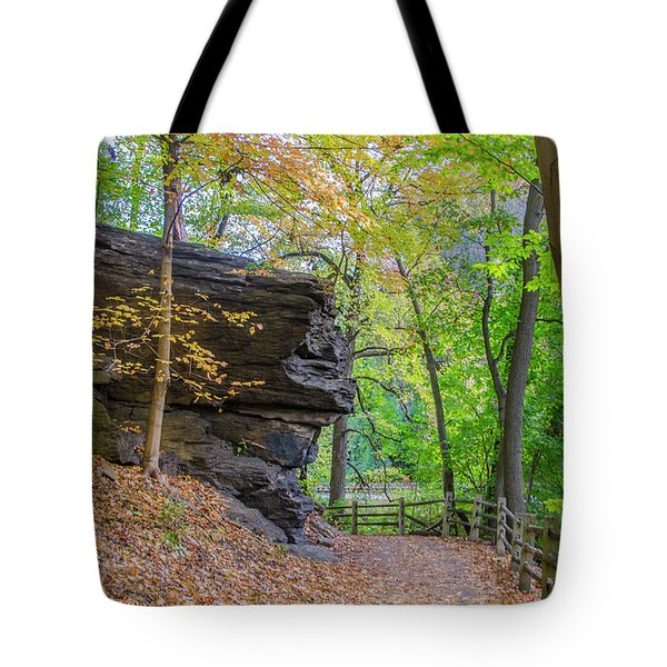 Tote Bag featuring the photograph Autumn Walk In Fairmount Park -  Licoln Drive by Bill Cannon