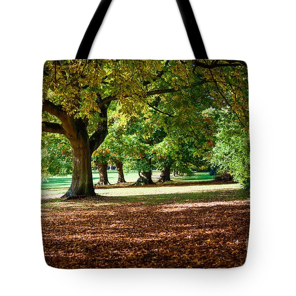 Autumn Walk In The Park Tote Bag by Colin Rayner