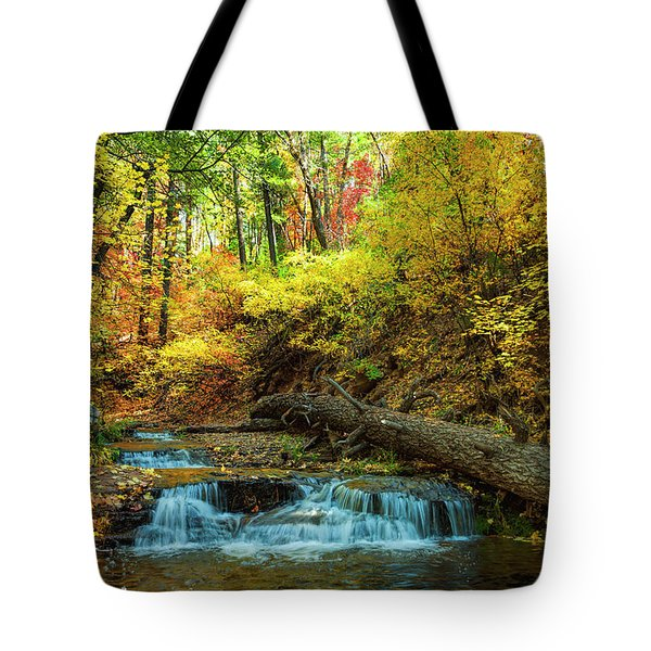 Tote Bag featuring the photograph Autumn Waterfall by Anthony Citro