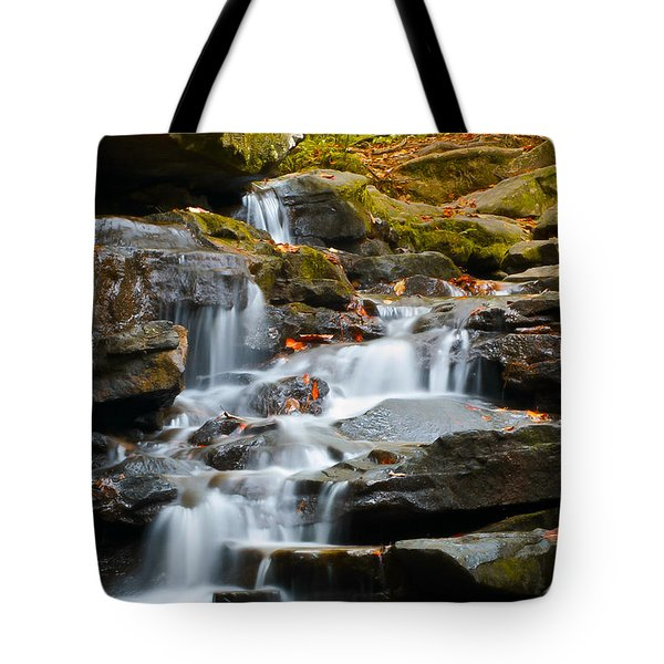 Autumn Waterfall Tote Bag by Shelby  Young