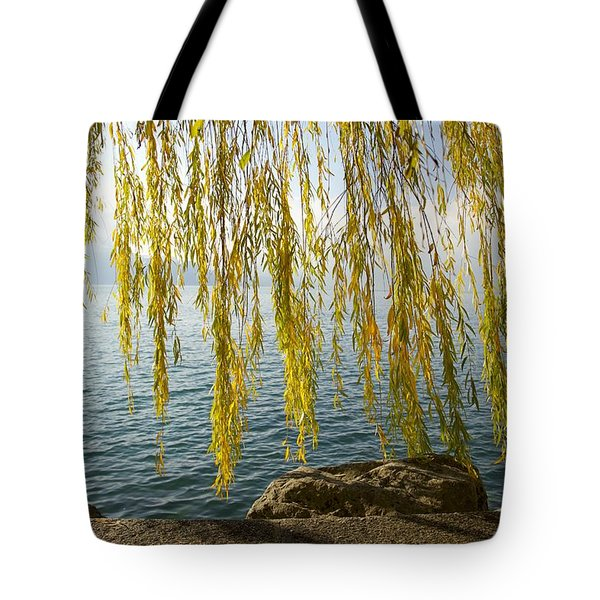Autumn Willow Tote Bag by Colleen Williams