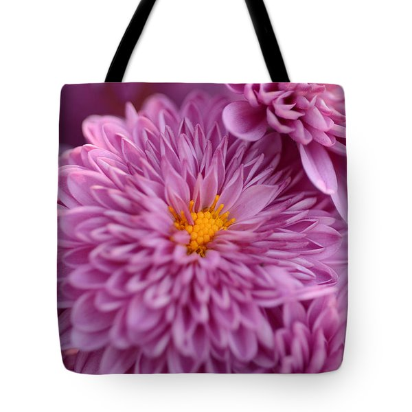 Autumn Wonder Tote Bag by Wanda Brandon