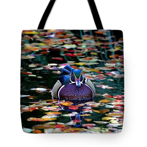 Autumn Wood Duck Tote Bag