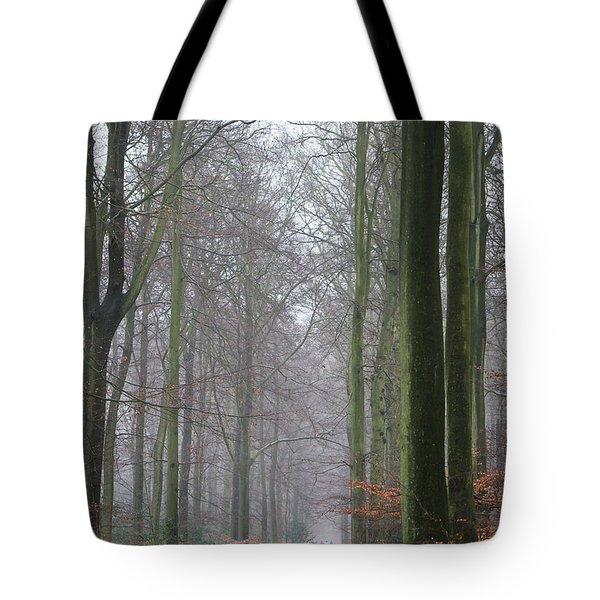 Autumn Woodland Avenue Tote Bag by Gary Eason