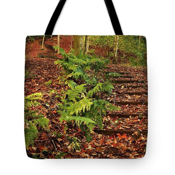 Autumn Woodland Path Tote Bag
