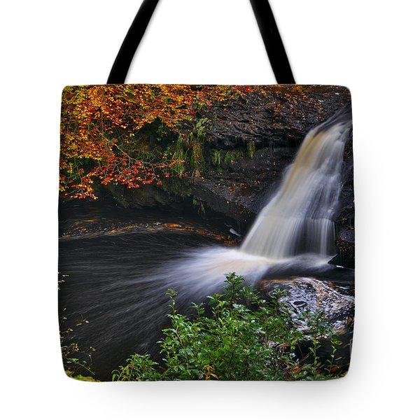 Autumn Woodland Waterfall Tote Bag