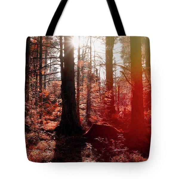 Autumnal Afternoon Tote Bag