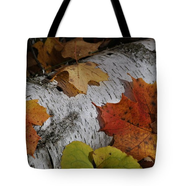 Autumnal Melange Tote Bag