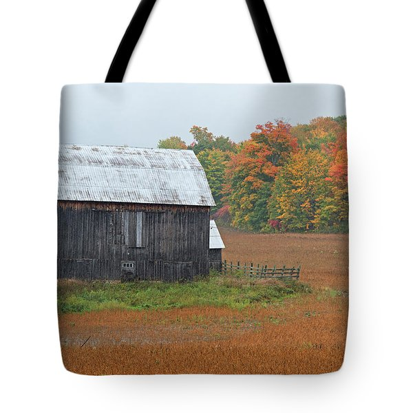 Tote Bag featuring the photograph Autumnal.. by Nina Stavlund
