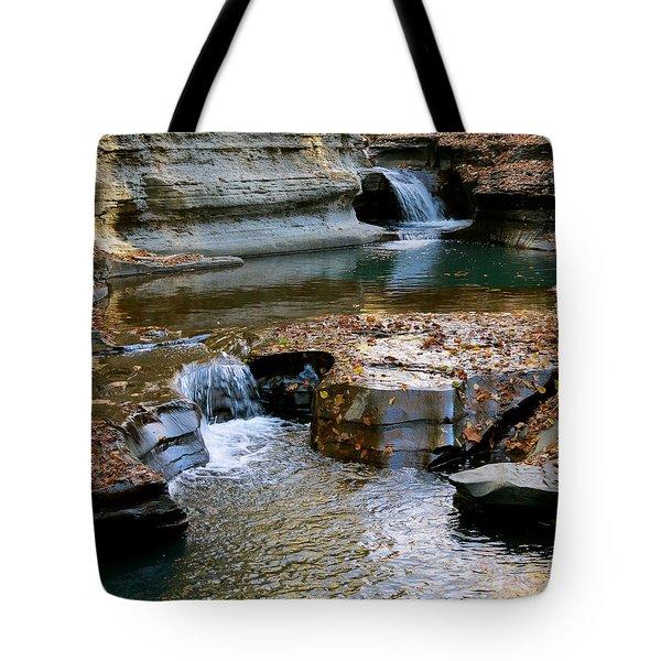 Autumnal Pool Tote Bag