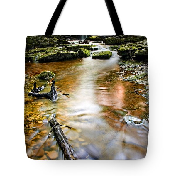 Autumnal Waterfall Tote Bag by Meirion Matthias