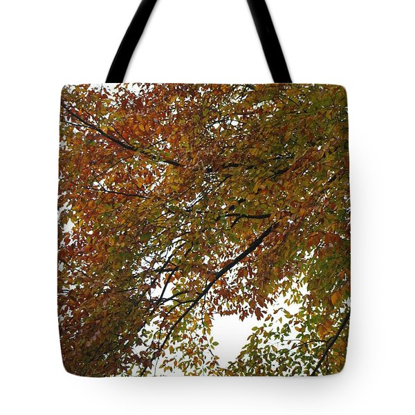 Tote Bag featuring the photograph Autumn's Abstract by Deborah  Crew-Johnson