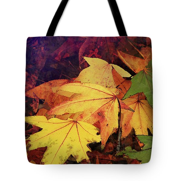 Autumns Colors Tote Bag by Robert Ball