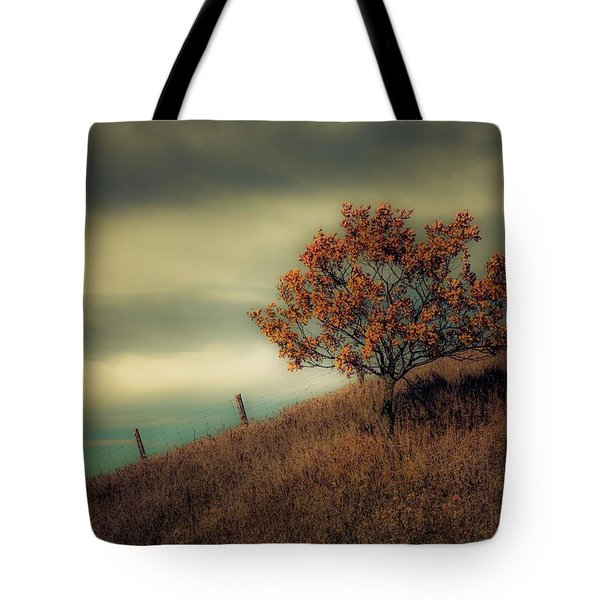 Autumns End Tote Bag