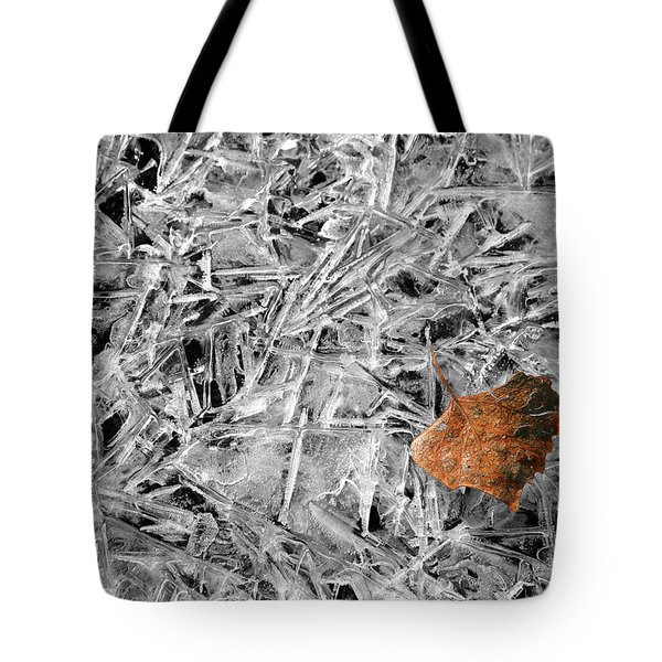 Tote Bag featuring the photograph Autumn's End by Marie Leslie