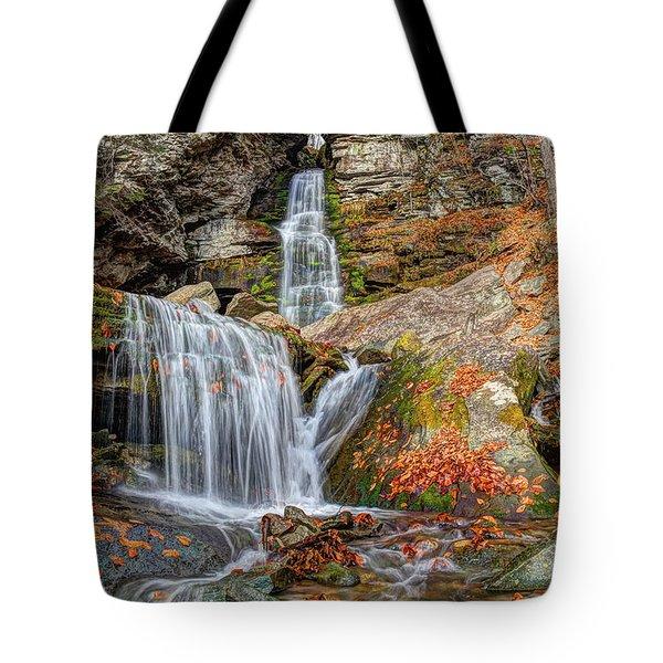 Autumns End Tote Bag