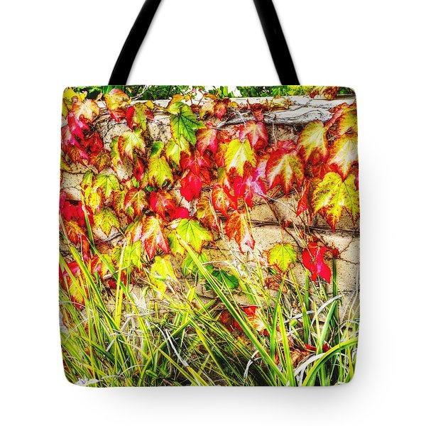 Autumn's Kiss Tote Bag