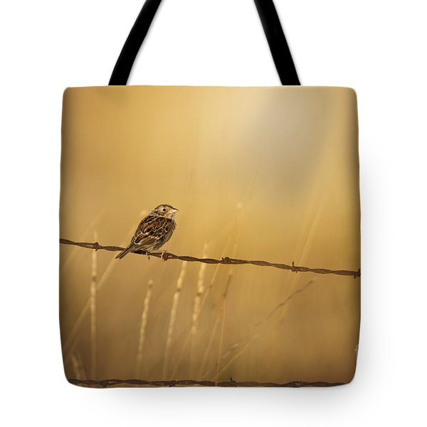 Autumns Light Tote Bag