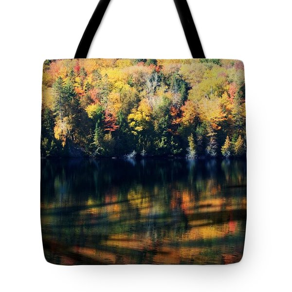 Tote Bag featuring the photograph Autumn's Masterpiece by Robin Regan