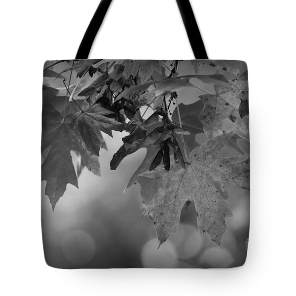 Autumn's Mystery Tote Bag