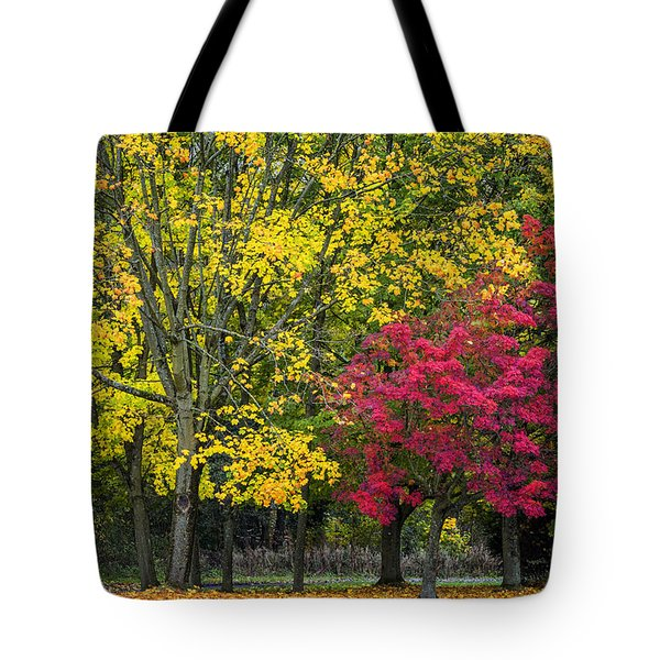 Autumn's Peak Tote Bag by Jeremy Lavender Photography
