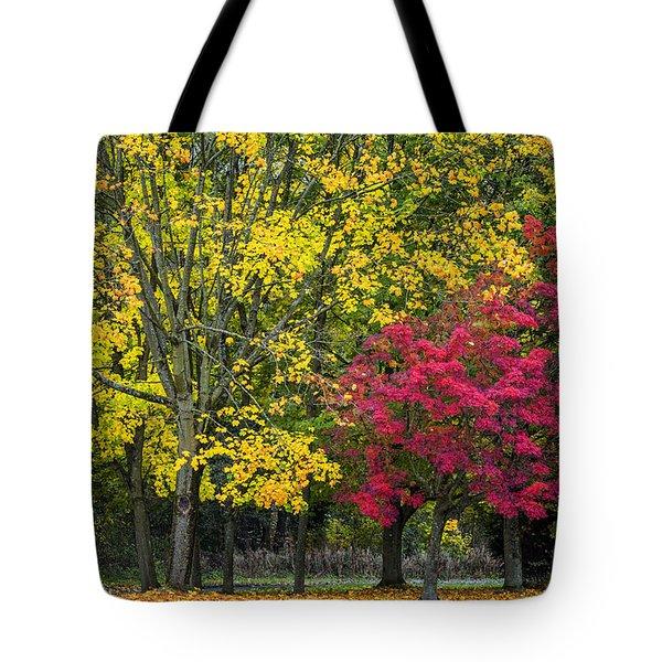 Autumn's Peak Tote Bag