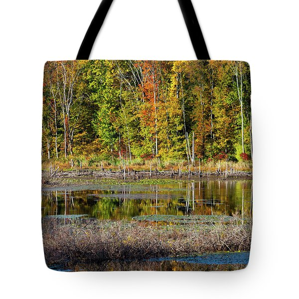 Tote Bag featuring the photograph Autumns Quiet Moment by Karol Livote