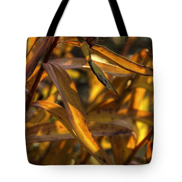 Autumn's Roadside Show Tote Bag by Steve Gravano