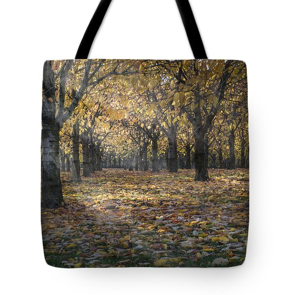 Tote Bag featuring the photograph Autumns Strokes by Bruno Santoro